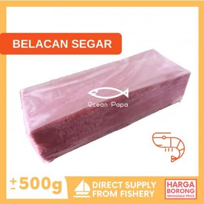Belacan Segar - Ocean Papa (500g+-)