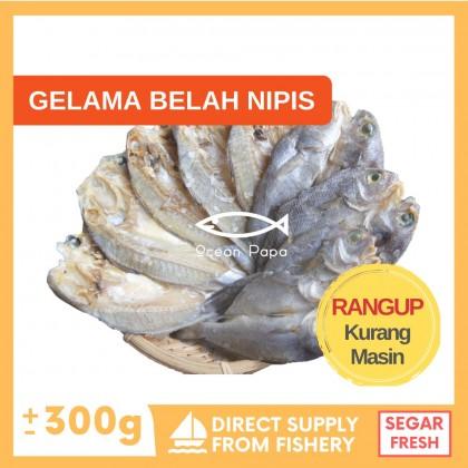 Ikan Masin Gelama Belah Nipis Gred A - Ocean Papa (300g)