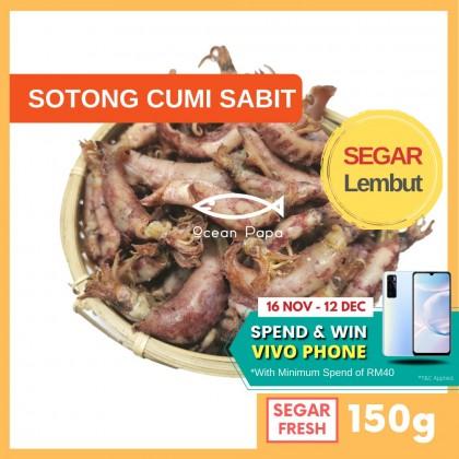 Sotong Kering Cumi Ocean Papa (150G)